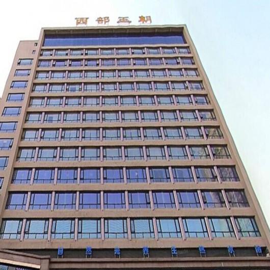 西安西部王朝商务会馆电梯控制系统
